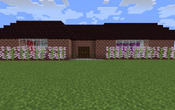 Modern 1.12 House
