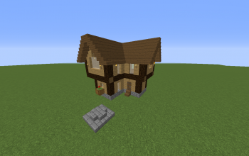 Small Fancy Wood Hoause