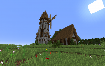 wind mill & house