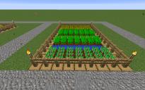 Farm NPC