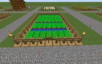 Farm Potatoe