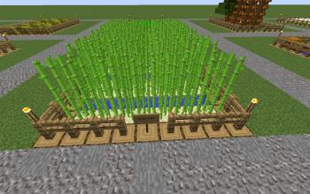 Farm Sugar
