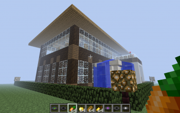 Modern Large Foresty House