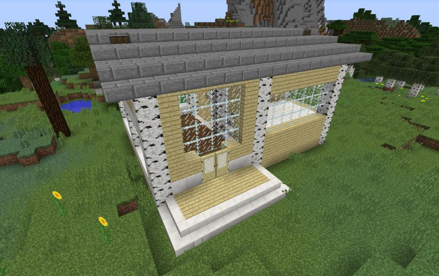 Birch House With Windows Creation 10934