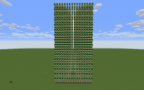Cactus Farm: 32 long & 64 High