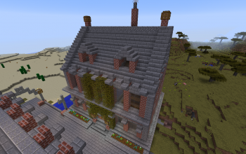 Brick City House 2 (Roof)