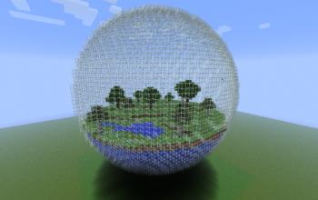 Forest Biosphere