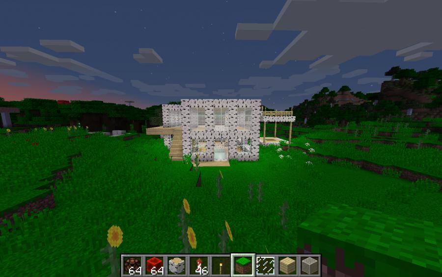 Birch Wood House Creation 12255