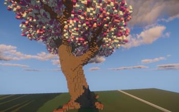 Giant Cherry Blossom