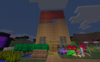 Pixelmon House final