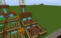 Pumpkin & Melon Farm