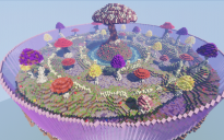 Mushroom Lands Arena [1.16]