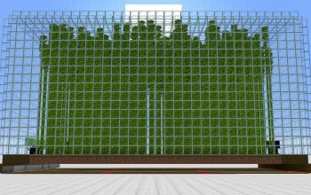 Automatic Bamboo Farm