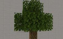 Vanilla tree