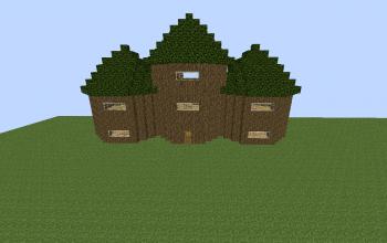 A Treehouse