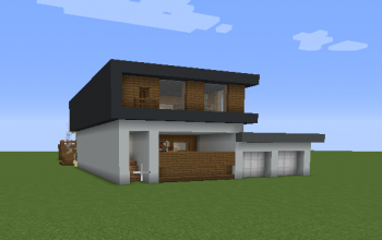 Modern House with library