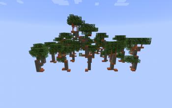 Acacia Tree (10 Variations)