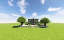 Modern House #2