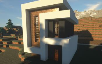 Small Modern House #1