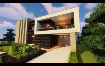 Modern House #111