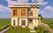 Modern House #115