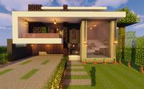 Modern House #116