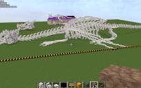Dragon Skull And Body