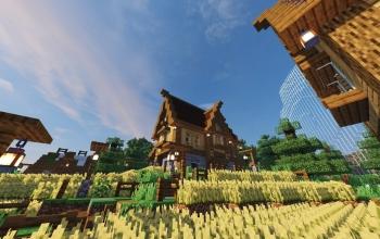 Medieval house 3
