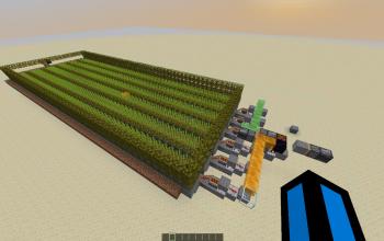 Best sugar cane farm