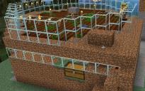Wheat / Carrot Farm