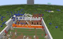 Sheep-Flag prototype