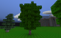 Realistic Tree 1