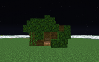 Jungle base