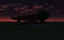 small survival house