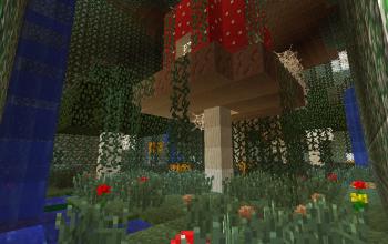 Underground Witches Garden