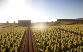 Massive semi-Automatic Farm