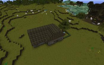 New Villager House!
