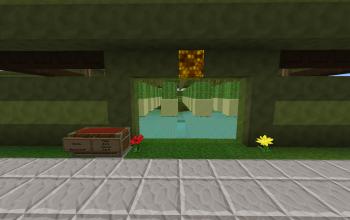 Automatic Cactus farm