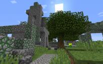 Minecraft Village Ruins