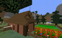 Contemporary House 05 - Sheep Farm