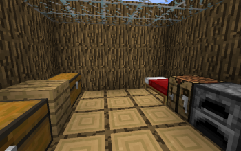 House with storage
