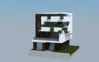 16x16 Modern House 3