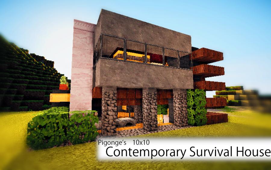Pigonges 10x10 Survival House 3 creation 608