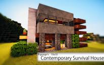 Pigonge's 10x10 Survival House 3