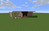 Modernish House