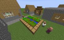 "NPC Village ""farm with wheat"""