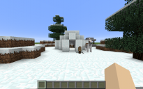 Spruce Biome Igloo
