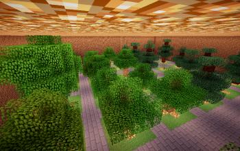 Tree Farm Underground