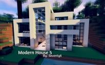 Modern House 5