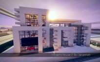 Modern House 7